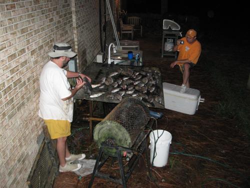 Fish scaler electric at walmart myideasbedroom com