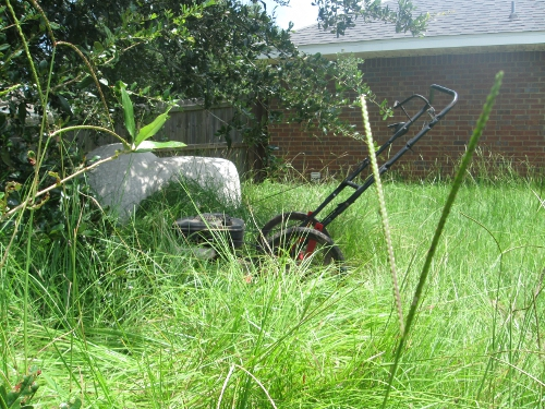 Lost mower